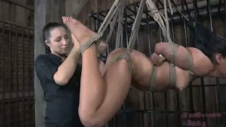 Latin chic tied and hanged to the ceiling in hot BDSM sex video